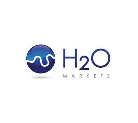 h2o markets London, Web development Berkshire